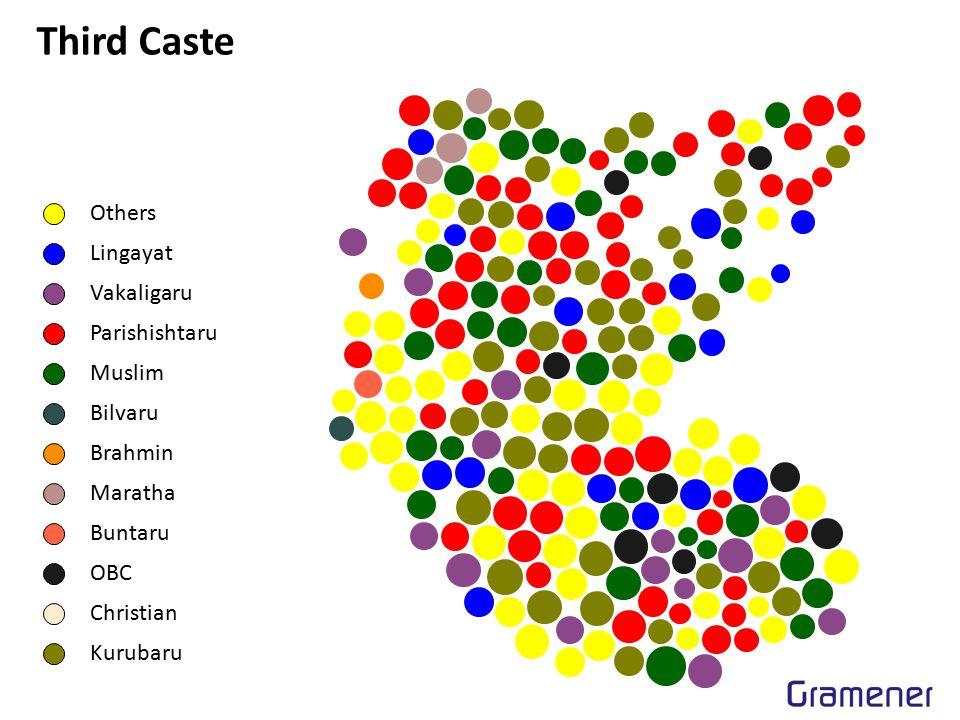 Third Caste Others Lingayat Vakaligaru Parishishtaru Muslim Bilvaru Brahmin Maratha Buntaru OBC Christian Kurubaru