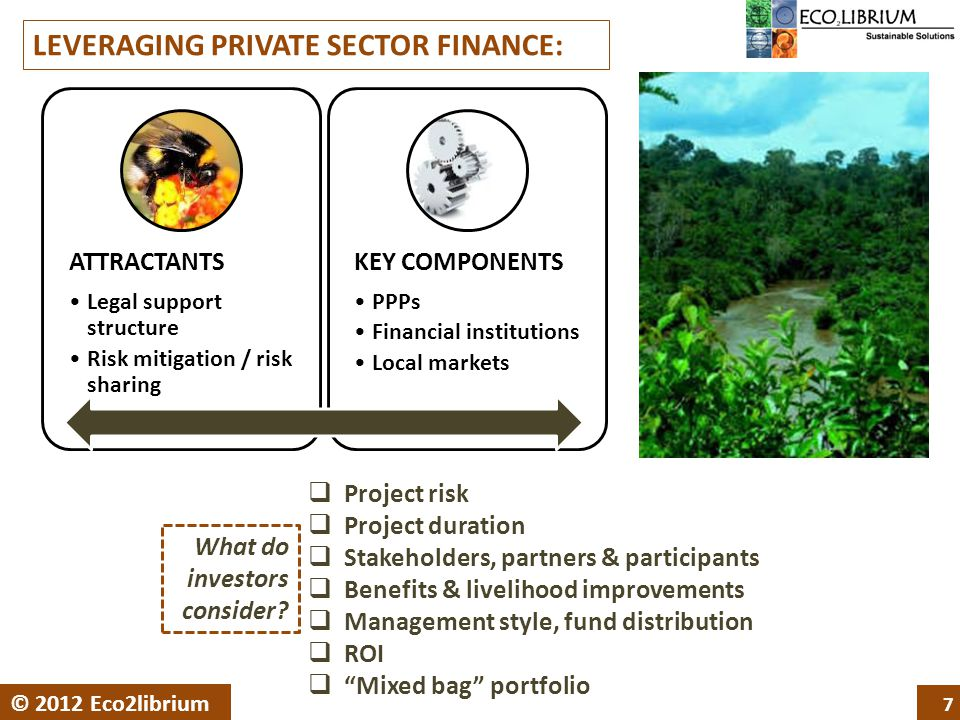 7 © 2012 Eco2librium LEVERAGING PRIVATE SECTOR FINANCE:  Project risk  Project duration  Stakeholders, partners & participants  Benefits & livelihood improvements  Management style, fund distribution  ROI  Mixed bag portfolio ATTRACTANTS Legal support structure Risk mitigation / risk sharing KEY COMPONENTS PPPs Financial institutions Local markets What do investors consider