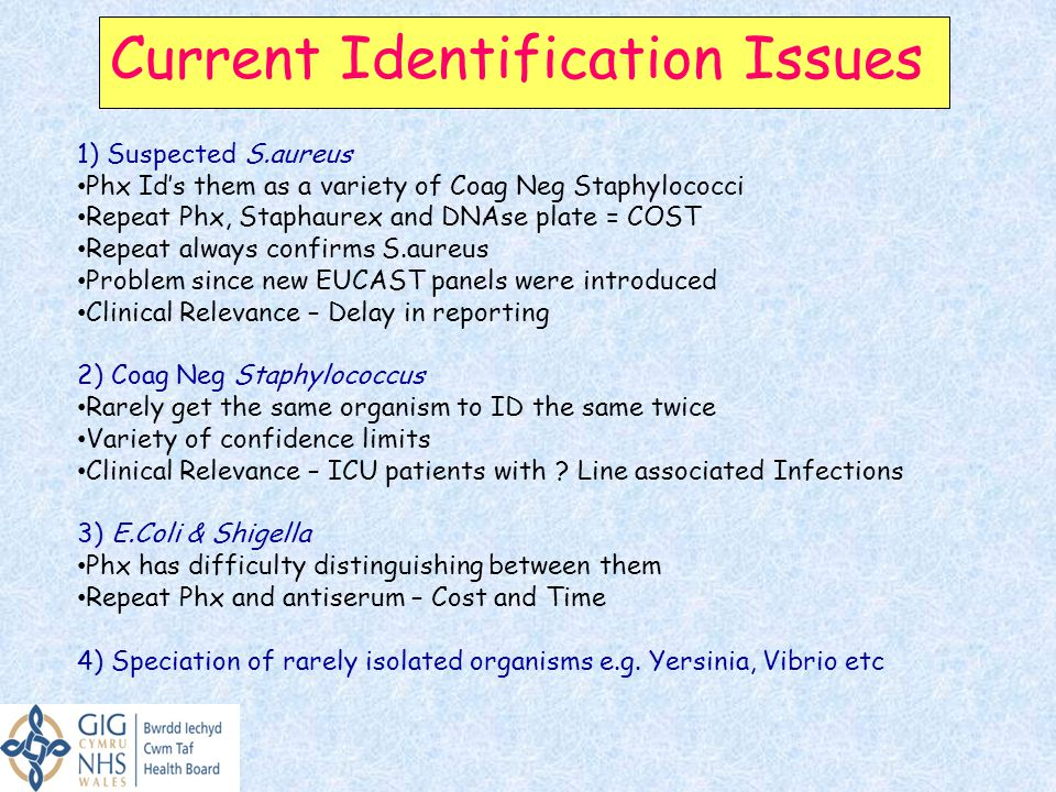 Current Identification Issues 1) Suspected S.aureus Phx Id's them as a variety of Coag Neg Staphylococci Repeat Phx, Staphaurex and DNAse plate = COST