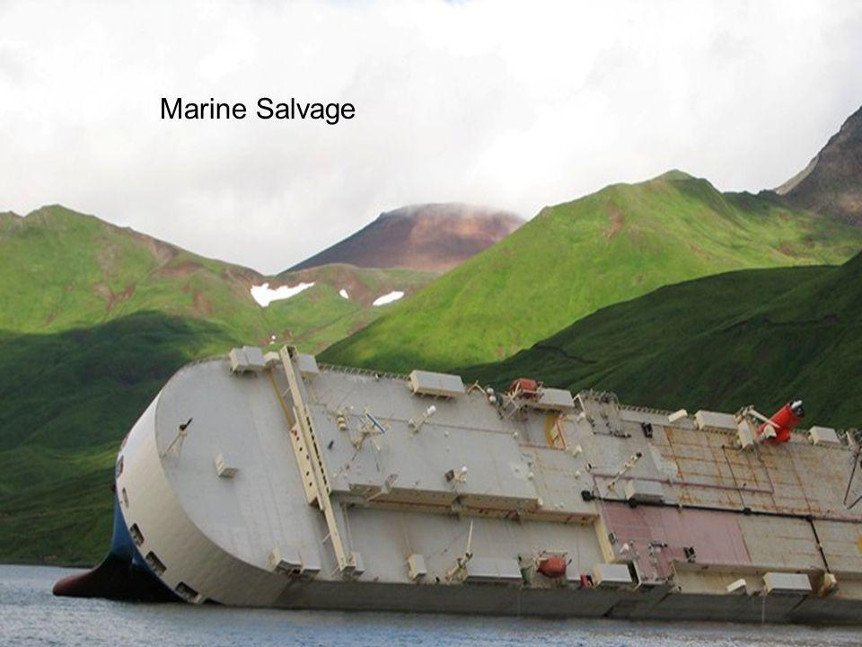 COSTA CONCORDIA JOLLY AMARANTO – RoRo Breakbulk  10,500 mt Cargo  Including >100 mt Steel Wire