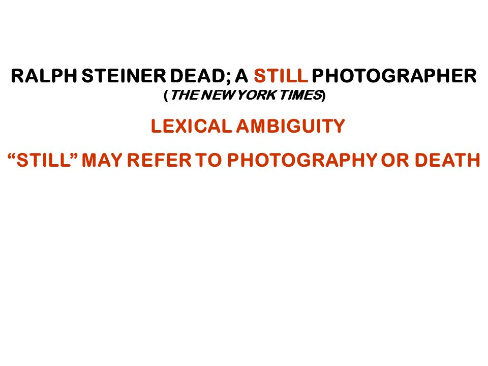 RALPH STEINER DEAD; A STILL PHOTOGRAPHER (THE NEW YORK TIMES) RALPH STEINER DEAD; A STILL PHOTOGRAPHER (THE NEW YORK TIMES) LEXICAL AMBIGUITY STILL MAY REFER TO PHOTOGRAPHY OR DEATH
