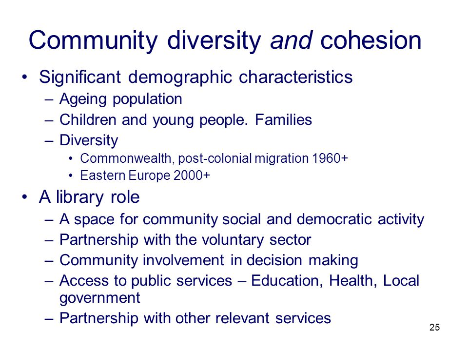 25 Community diversity and cohesion Significant demographic characteristics –Ageing population –Children and young people.