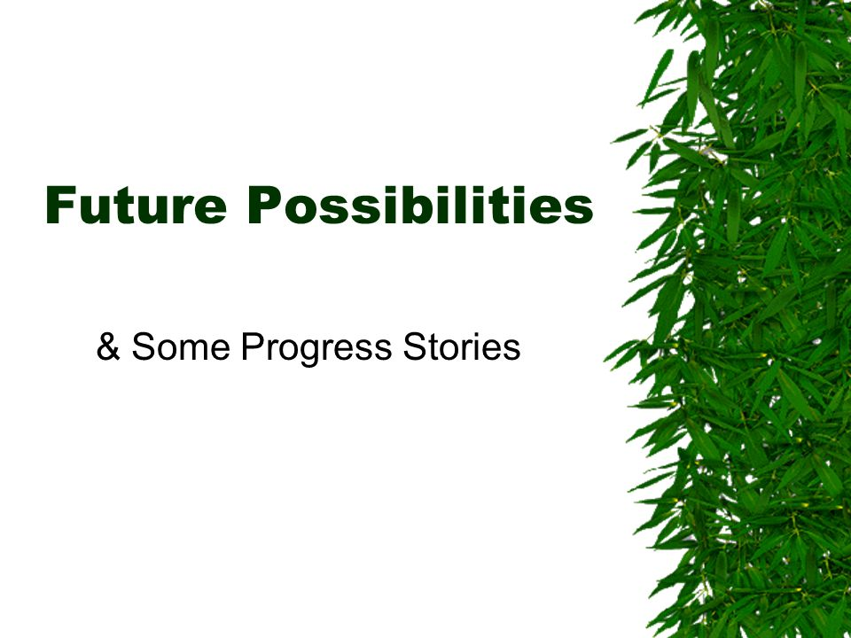 Future Possibilities & Some Progress Stories