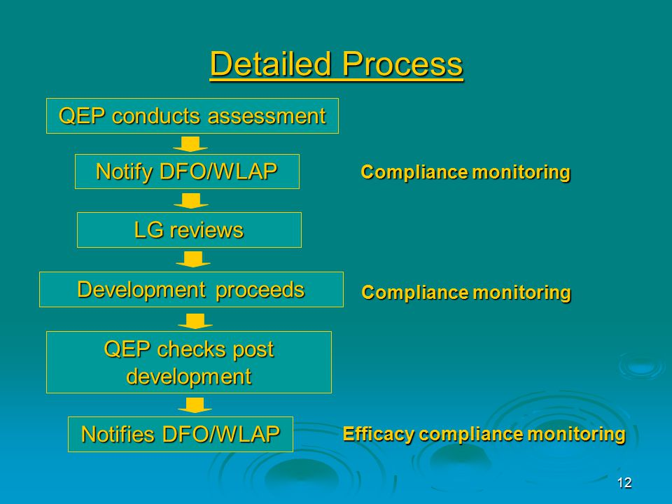 12 Detailed Process QEP conducts assessment Notify DFO/WLAP LG reviews Development proceeds QEP checks post development Notifies DFO/WLAP Compliance monitoring Efficacy compliance monitoring