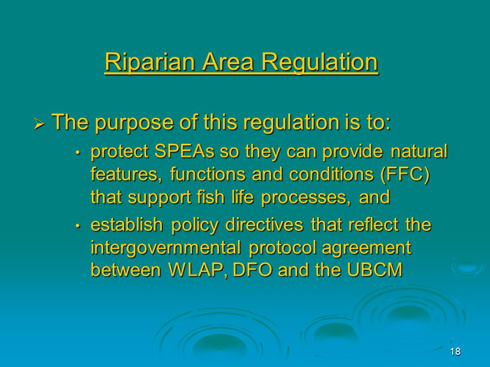18 Riparian Area Regulation  The purpose of this regulation is to: protect SPEAs so they can provide natural features, functions and conditions (FFC) that support fish life processes, and protect SPEAs so they can provide natural features, functions and conditions (FFC) that support fish life processes, and establish policy directives that reflect the intergovernmental protocol agreement between WLAP, DFO and the UBCM establish policy directives that reflect the intergovernmental protocol agreement between WLAP, DFO and the UBCM