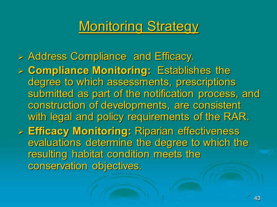 43 Monitoring Strategy  Address Compliance and Efficacy.