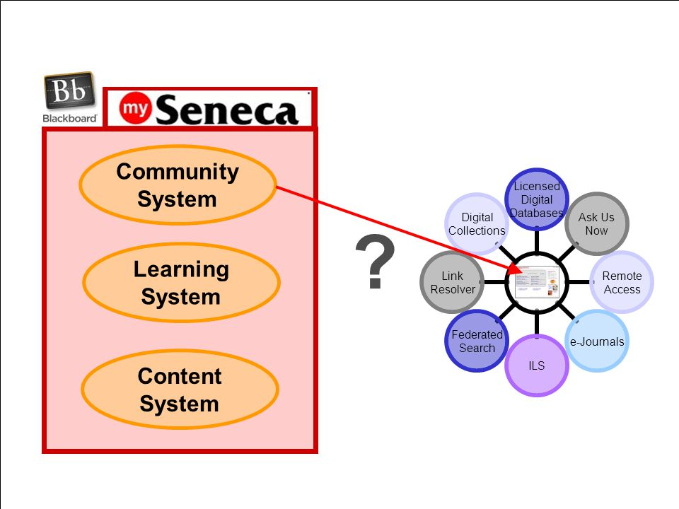 Community System Learning System Content System ?