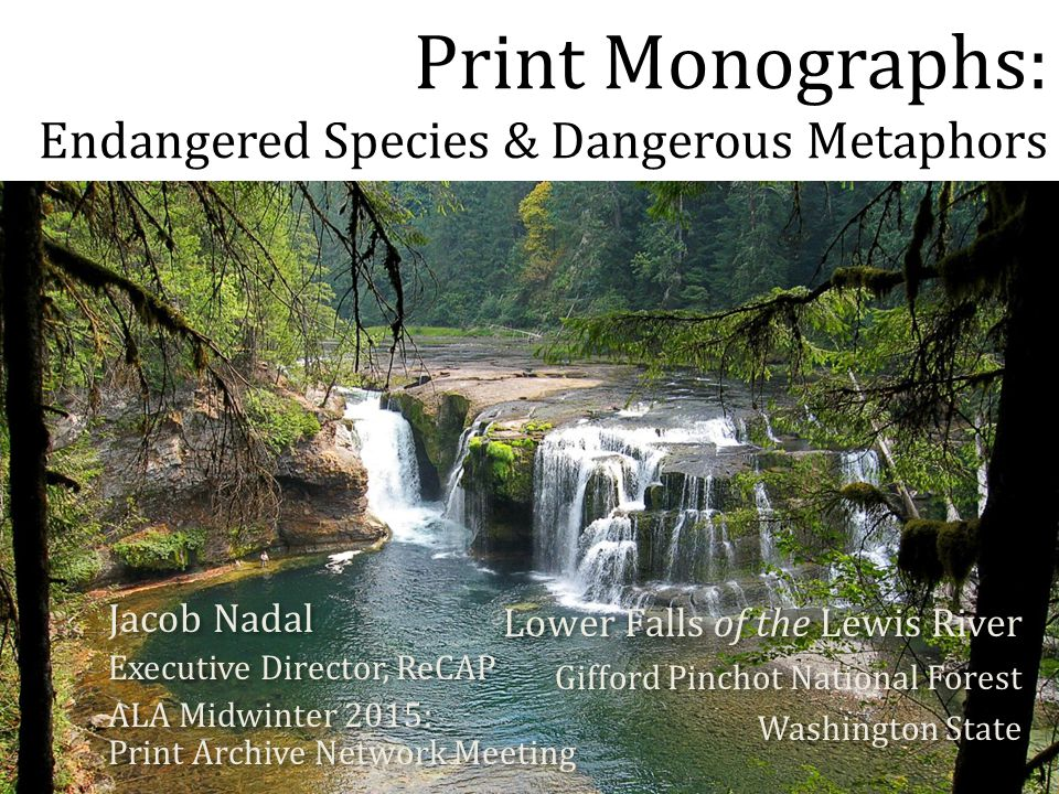 Print Monographs: Endangered Species & Dangerous Metaphors Jacob Nadal Executive Director, ReCAP ALA Midwinter 2015: Print Archive Network Meeting Jacob Nadal Executive Director, ReCAP ALA Midwinter 2015: Print Archive Network Meeting Lower Falls of the Lewis River Gifford Pinchot National Forest Washington State Lower Falls of the Lewis River Gifford Pinchot National Forest Washington State