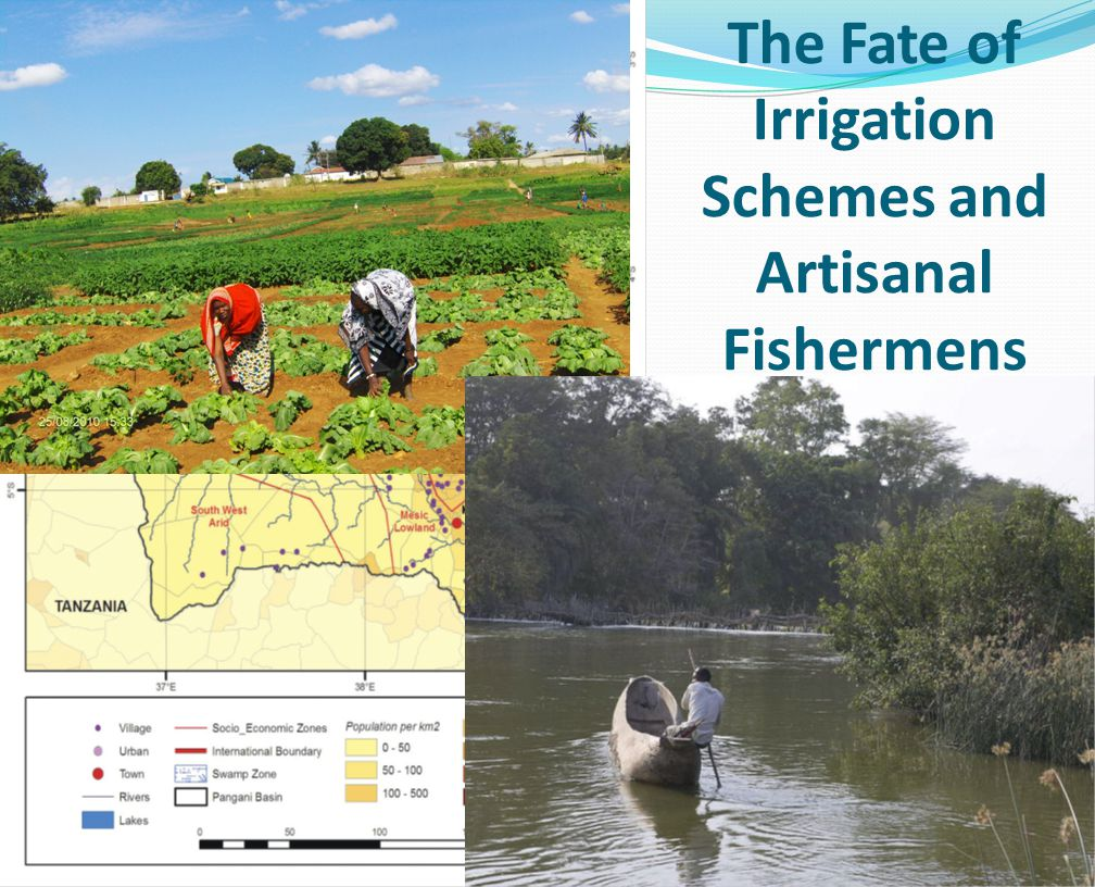 The Fate of Irrigation Schemes and Artisanal Fishermens