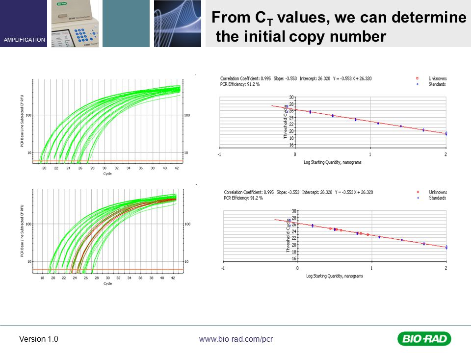 www.bio-rad.com/pcr AMPLIFICATION Version 1.0 From C T values, we can determine the initial copy number
