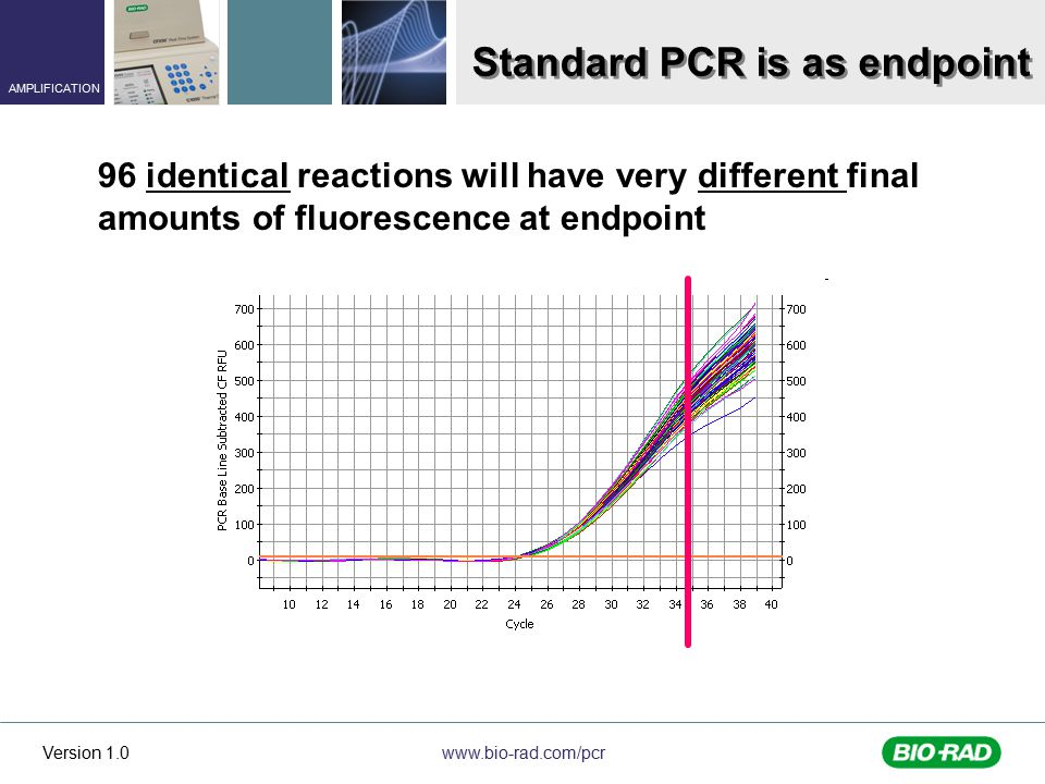 www.bio-rad.com/pcr AMPLIFICATION Version 1.0 Standard PCR is as endpoint 96 identical reactions will have very different final amounts of fluorescence at endpoint
