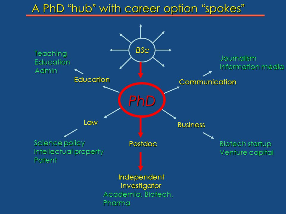 BSc BSc Postdoc Postdoc Independent Independent investigator investigator Academia, Biotech, Pharma Business Business Communication Communication Educ