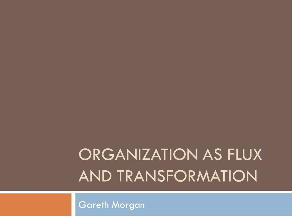 ORGANIZATION AS FLUX AND TRANSFORMATION Gareth Morgan