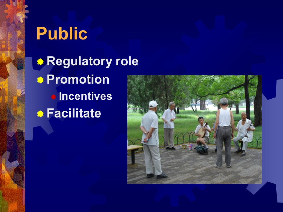 Public  Regulatory role  Promotion  Incentives  Facilitate