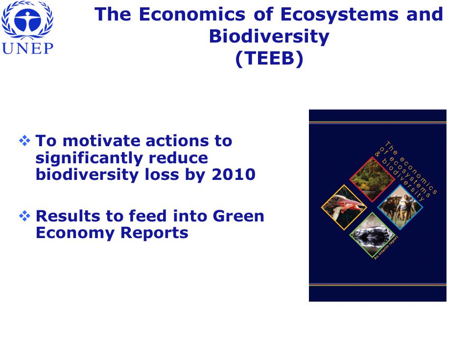 The Economics of Ecosystems and Biodiversity (TEEB)  To motivate actions to significantly reduce biodiversity loss by 2010  Results to feed into Green Economy Reports