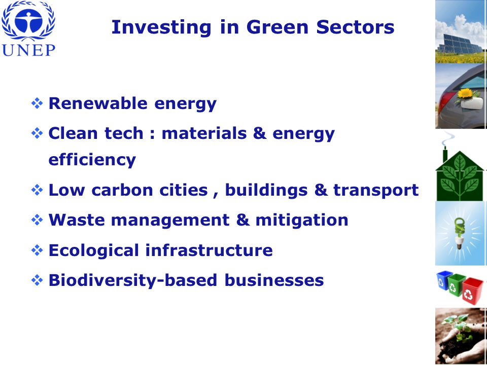 Investing in Green Sectors  Renewable energy  Clean tech : materials & energy efficiency  Low carbon cities, buildings & transport  Waste management & mitigation  Ecological infrastructure  Biodiversity-based businesses
