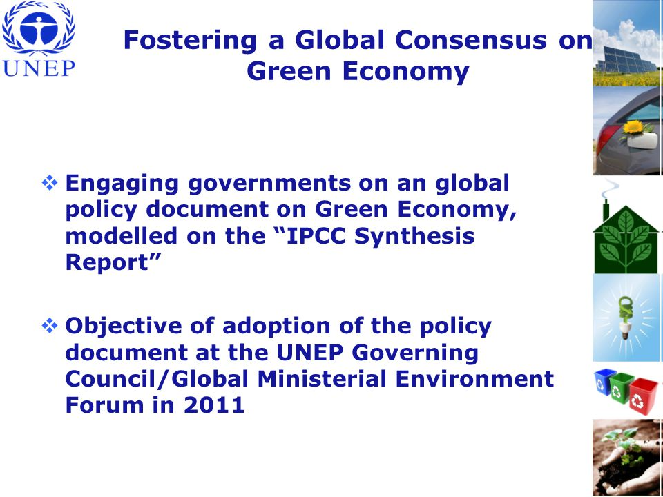 Fostering a Global Consensus on Green Economy  Engaging governments on an global policy document on Green Economy, modelled on the IPCC Synthesis Report  Objective of adoption of the policy document at the UNEP Governing Council/Global Ministerial Environment Forum in 2011