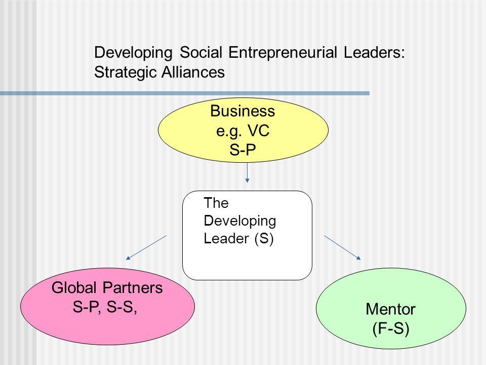 Developing Social Entrepreneurial Leaders: Strategic Alliances Mentor (F-S) Business e.g.