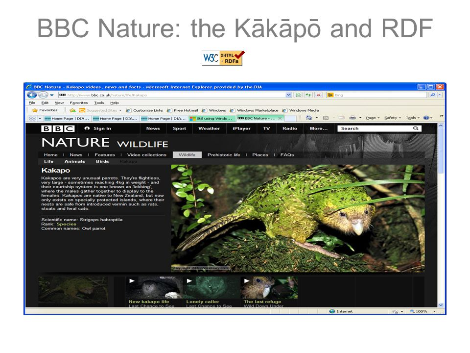BBC Nature: the Kākāpō and RDF