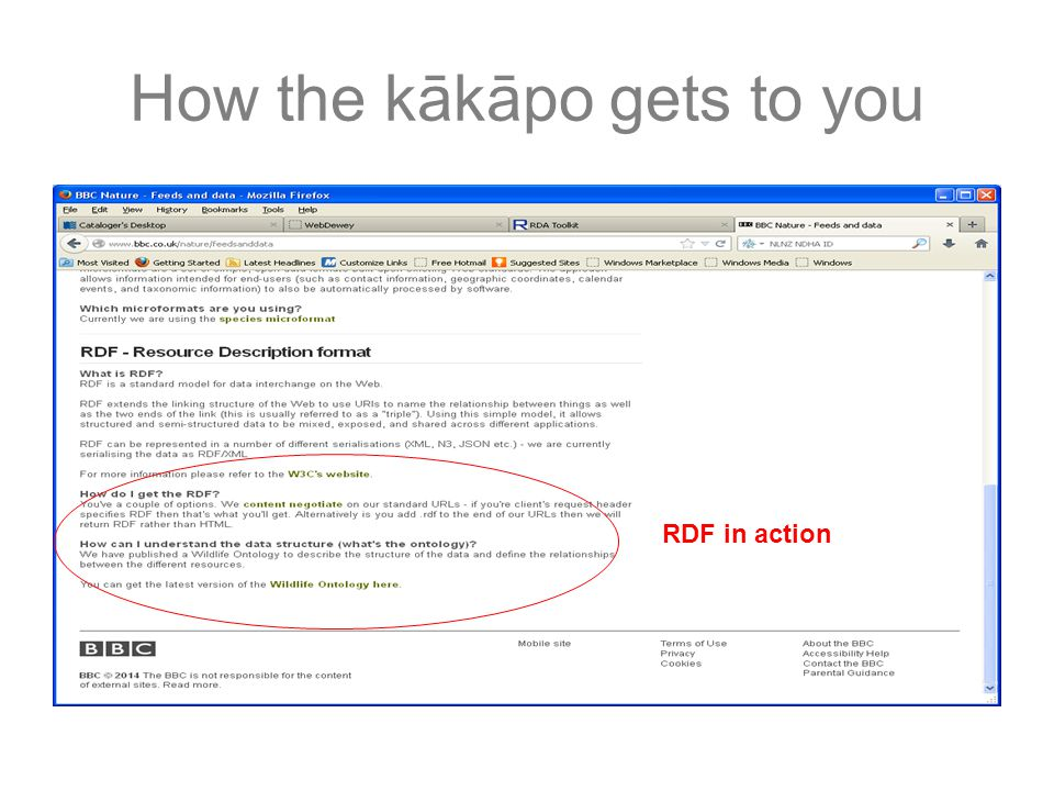 How the kākāpo gets to you RDF in action