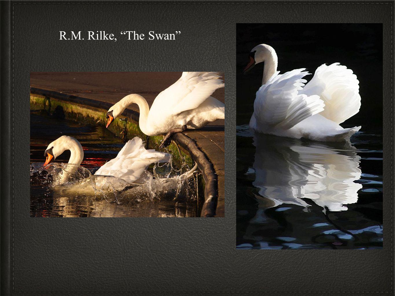 R.M. Rilke, The Swan