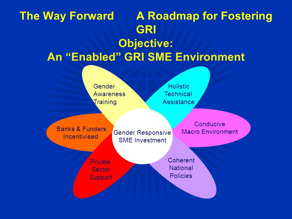 The Way ForwardA Roadmap for Fostering GRI Objective: An Enabled GRI SME Environment Gender Responsive SME Investment Holistic Technical Assistance Gender Awareness Training Conducive Macro Environment Banks & Funders Incentivised Coherent National Policies Private Sector Support