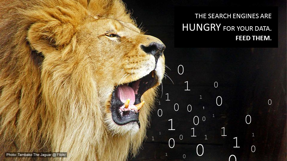 THE SEARCH ENGINES ARE HUNGRY FOR YOUR DATA. FEED THEM.