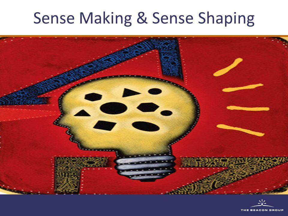 Sense Making & Sense Shaping