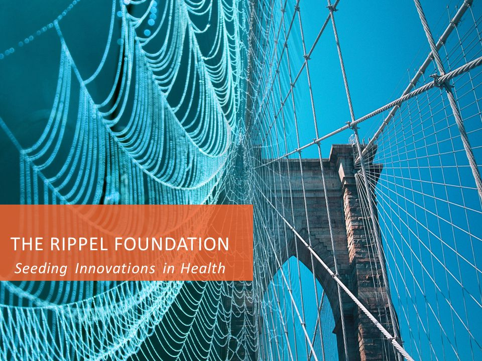 THE RIPPEL FOUNDATION Seeding Innovations in Health