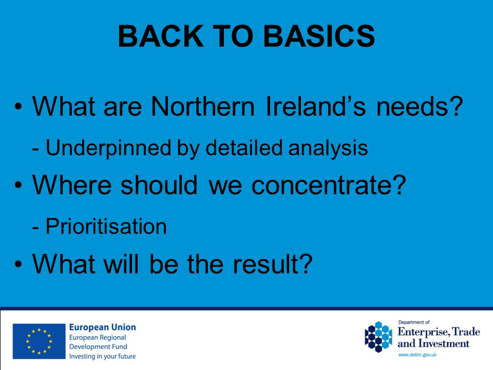 BACK TO BASICS What are Northern Ireland's needs.