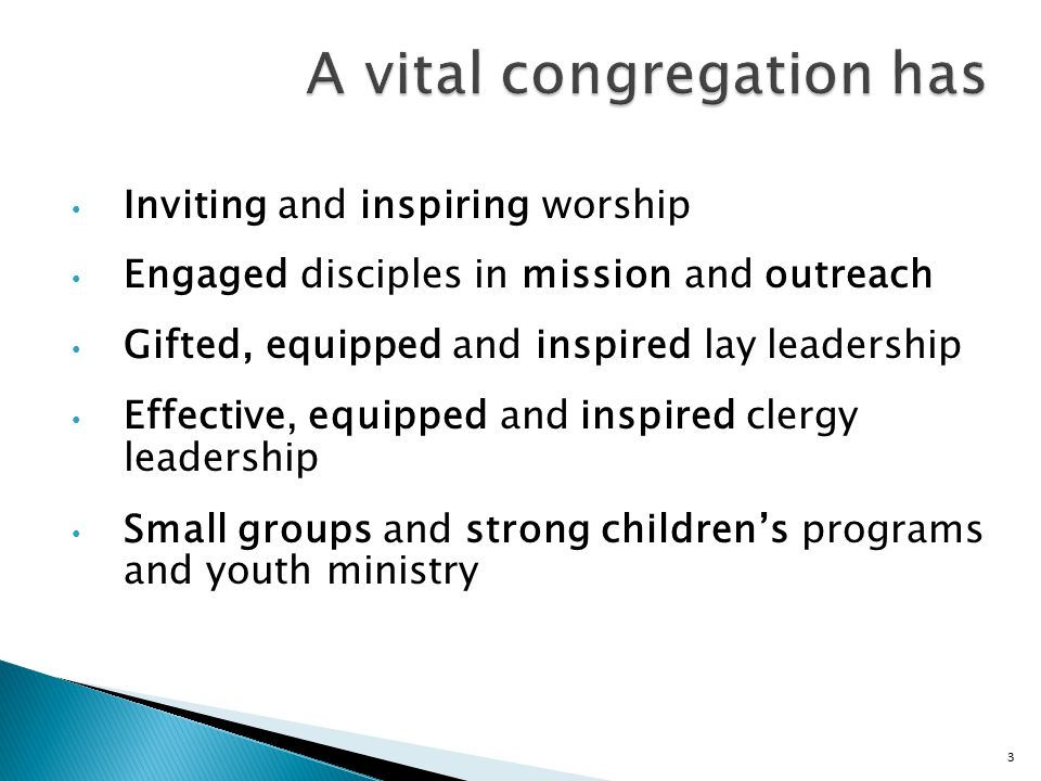 4 Marks of vital disciples Disciples worship Disciples makes new disciples Disciples engage in growing their faith Disciples engage in mission Disciples give to mission