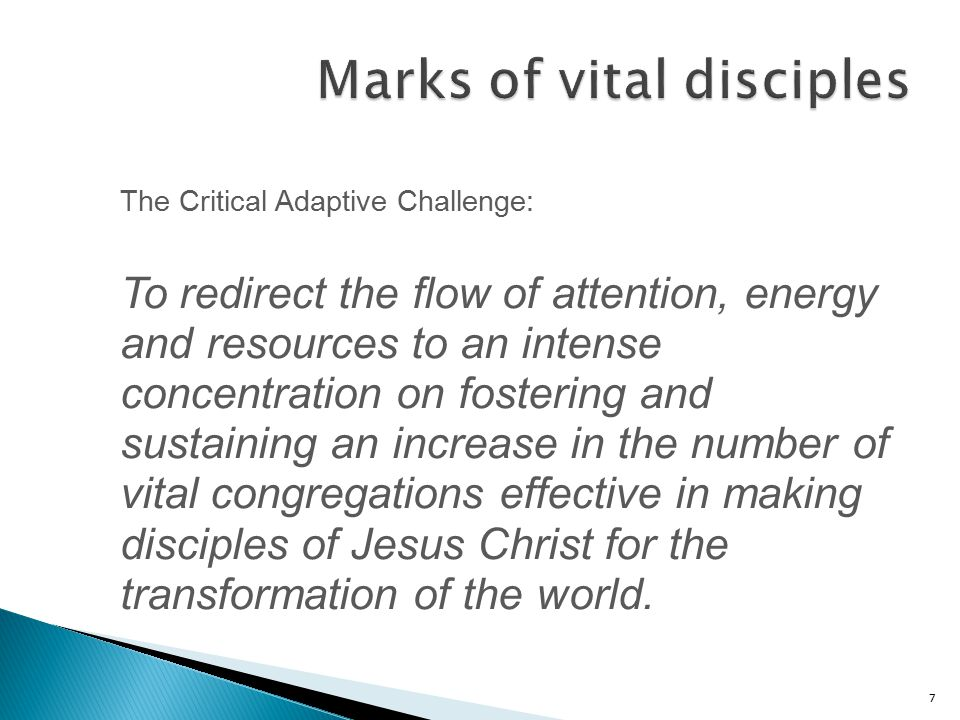 7 The Critical Adaptive Challenge: To redirect the flow of attention, energy and resources to an intense concentration on fostering and sustaining an increase in the number of vital congregations effective in making disciples of Jesus Christ for the transformation of the world.