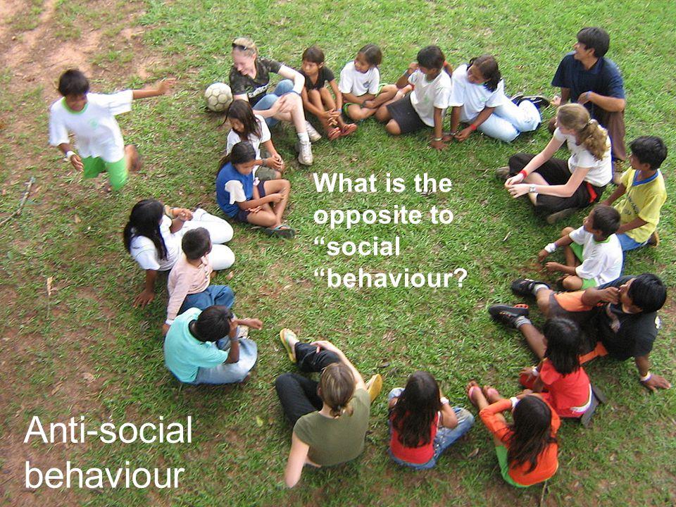 17 What is the opposite to social behaviour Anti-social behaviour