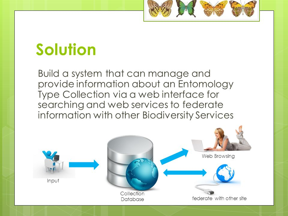 Solution Build a system that can manage and provide information about an Entomology Type Collection via a web interface for searching and web services to federate information with other Biodiversity Services Collection Database Input Web Browsing federate with other site
