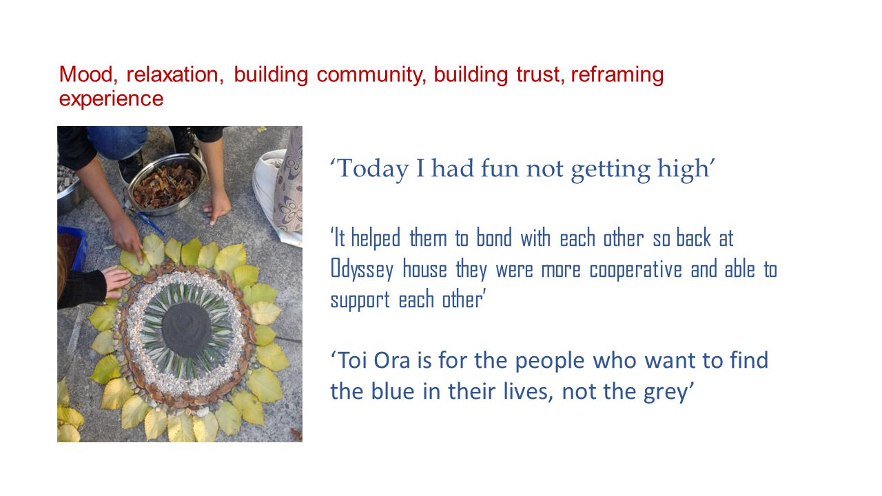 'Today I had fun not getting high' 'It helped them to bond with each other so back at Odyssey house they were more cooperative and able to support each other' 'Toi Ora is for the people who want to find the blue in their lives, not the grey' Mood, relaxation, building community, building trust, reframing experience