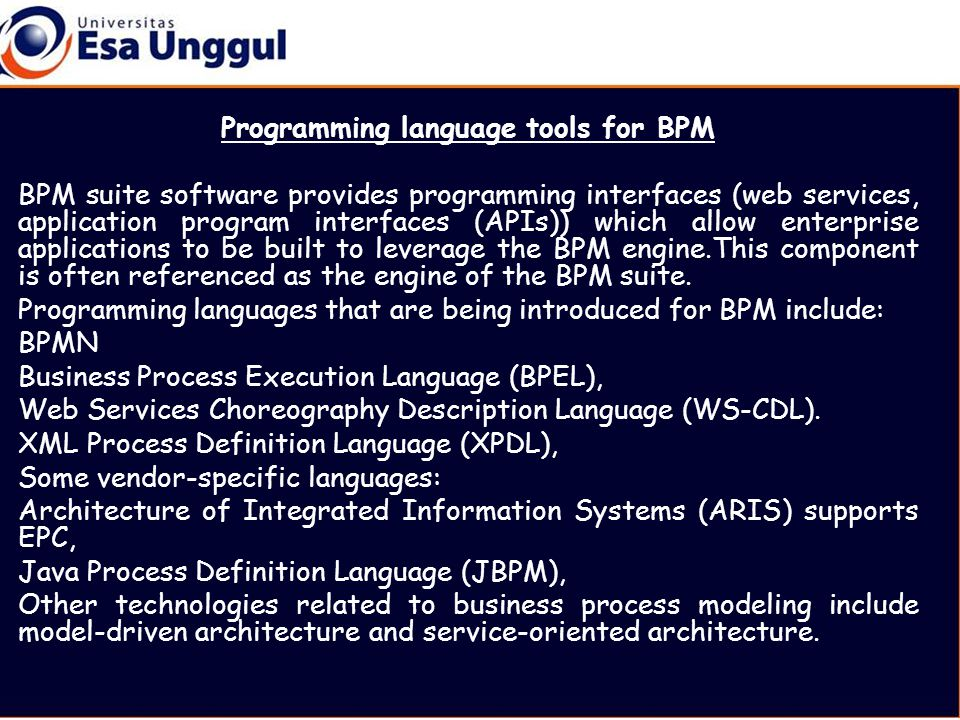 Programming language tools for BPM BPM suite software provides programming interfaces (web services, application program interfaces (APIs)) which allow enterprise applications to be built to leverage the BPM engine.This component is often referenced as the engine of the BPM suite.