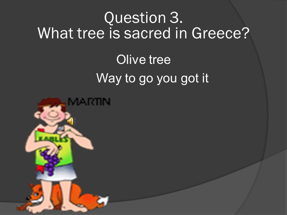 Question 3.  What tree is sacred in Greece 1.Apple tree 2. Coconut tree 3.Olive tree