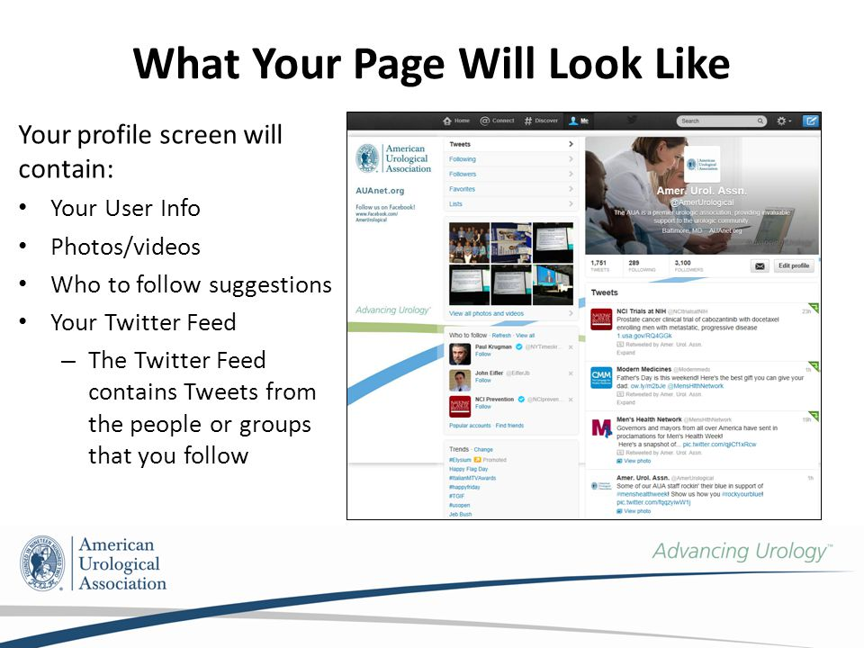 What Your Page Will Look Like Your profile screen will contain: Your User Info Photos/videos Who to follow suggestions Your Twitter Feed – The Twitter Feed contains Tweets from the people or groups that you follow