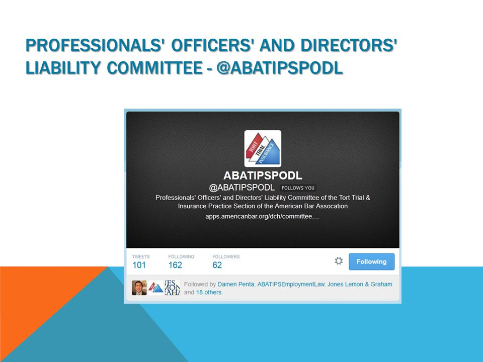 PROFESSIONALS OFFICERS AND DIRECTORS LIABILITY COMMITTEE - @ABATIPSPODL