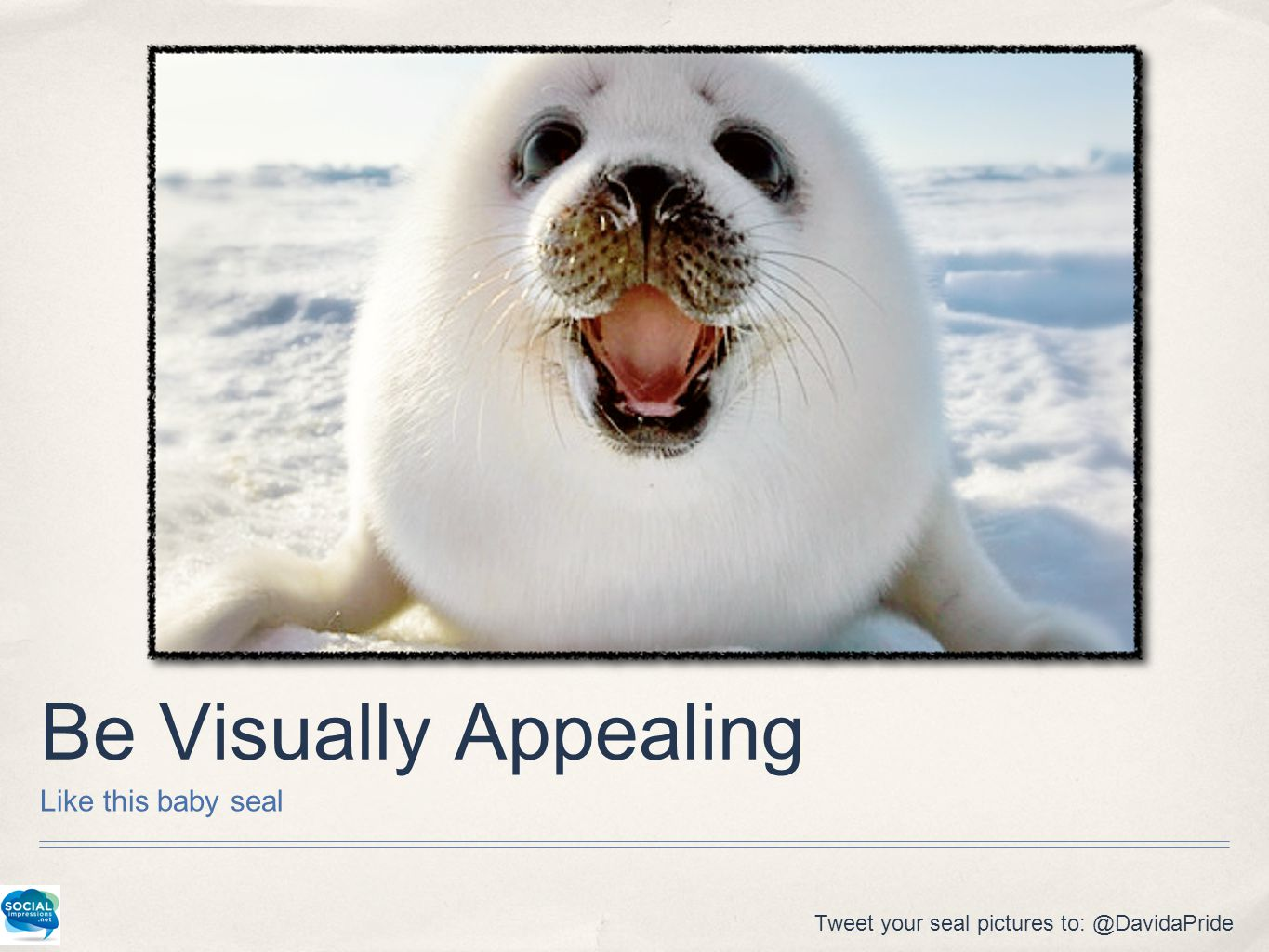 Be Visually Appealing Like this baby seal Tweet your seal pictures to: @DavidaPride