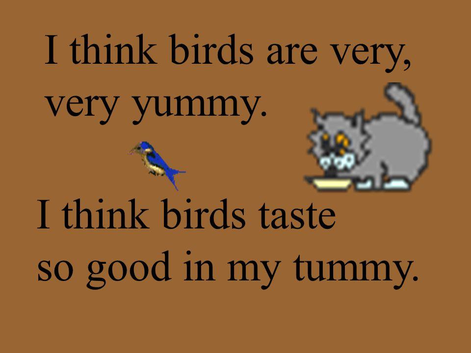 I think birds are very, very yummy. I think birds taste so good in my tummy.