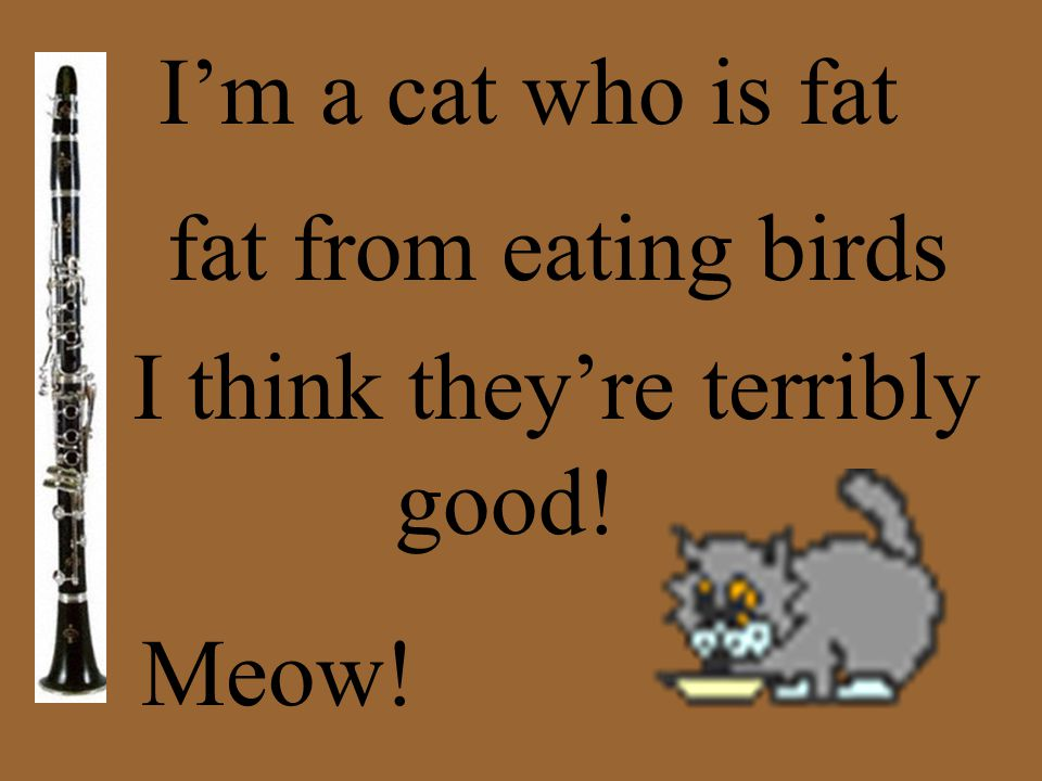 I'm a cat who is fat fat from eating birds I think they're terribly good! Meow!