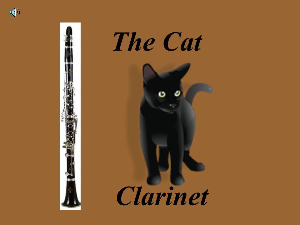 The Cat Clarinet