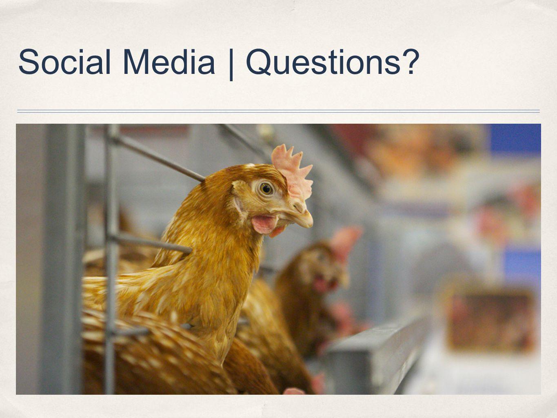 Social Media | Questions?