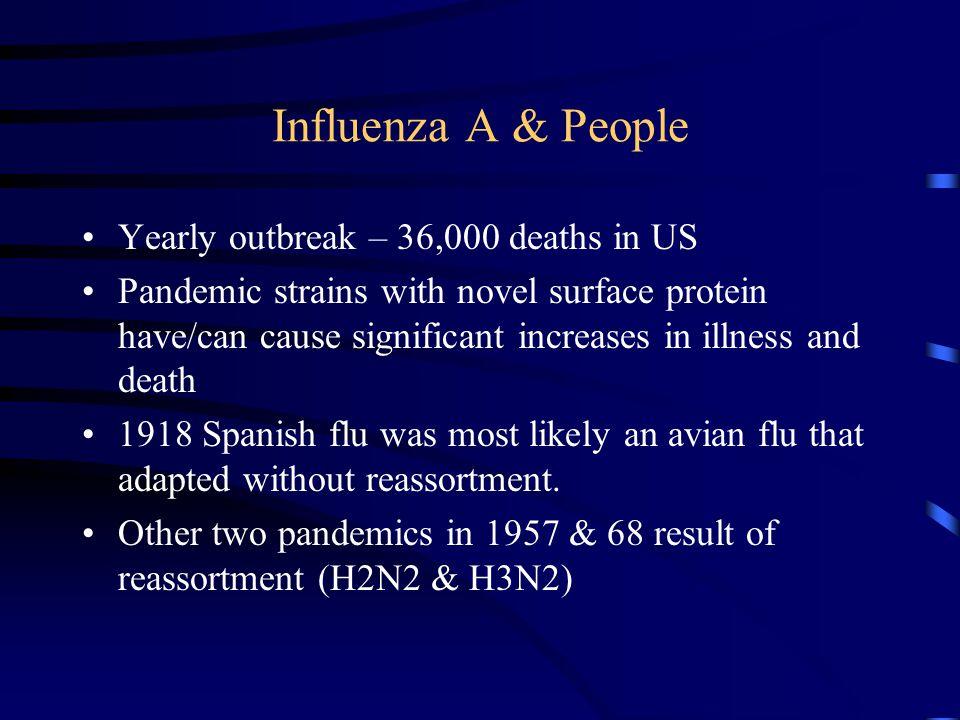 Why Worry.1918 Spanish (Kansas) Flu Duration of Pandemic 1918-1920 Rapid onset.