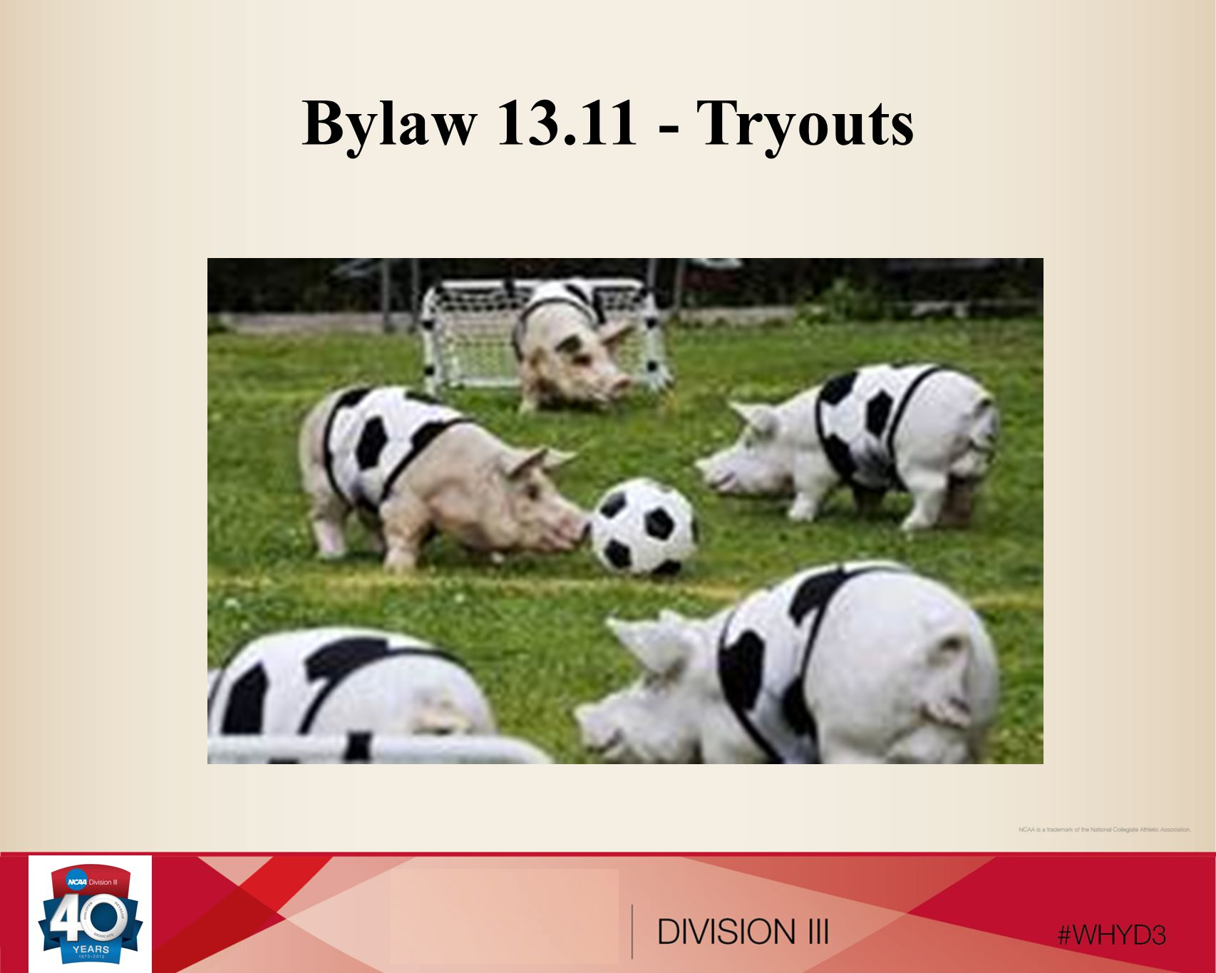 Bylaw 13.11 - Tryouts