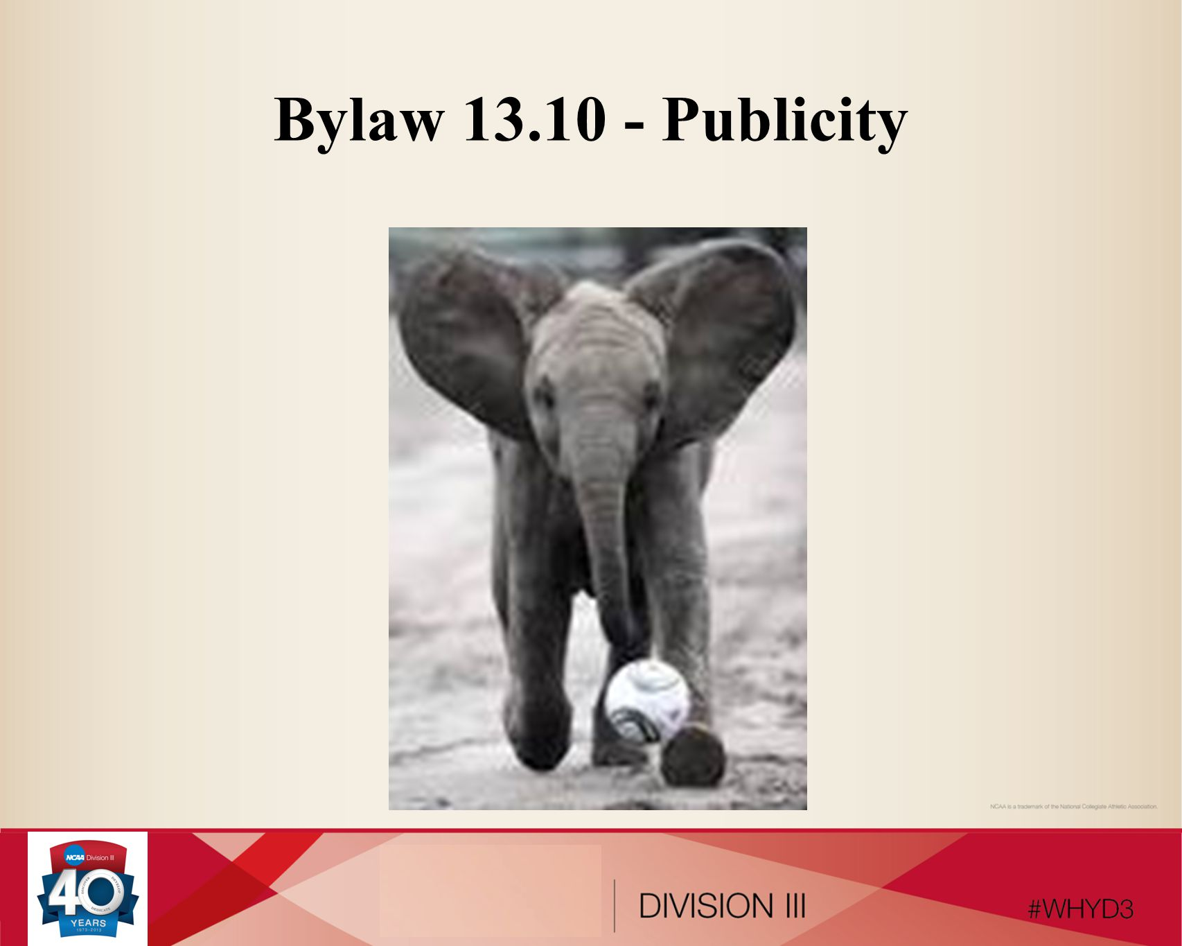 Bylaw 13.10 - Publicity
