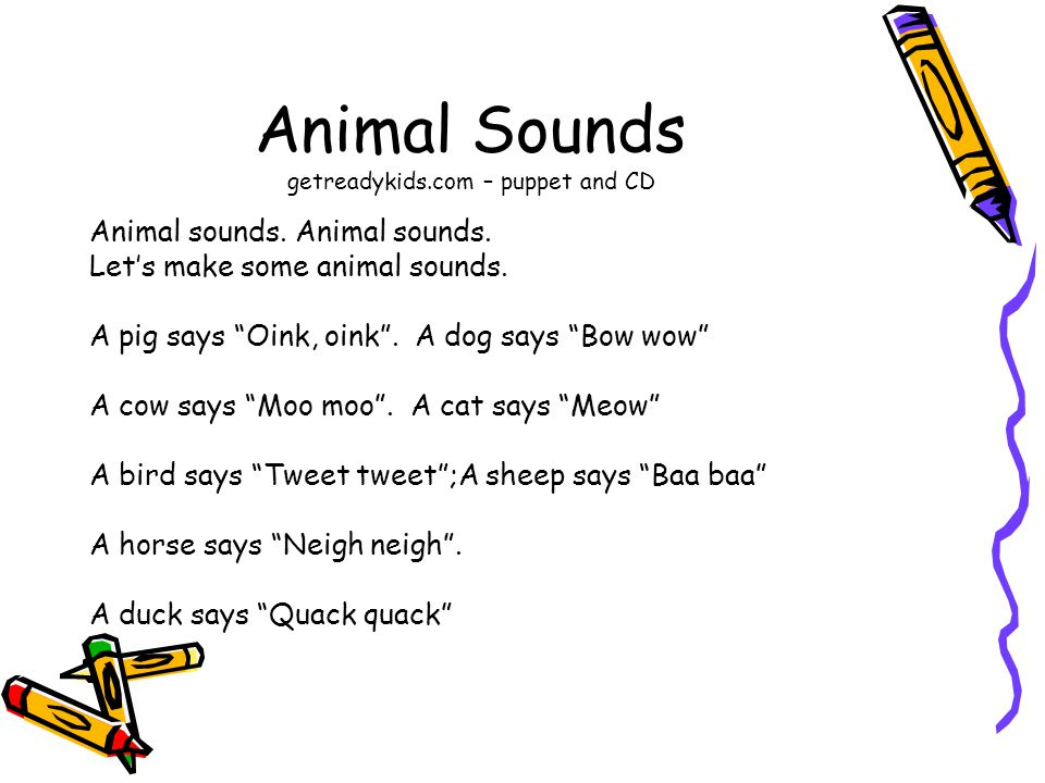 Animal Sounds getreadykids.com – puppet and CD Animal sounds.