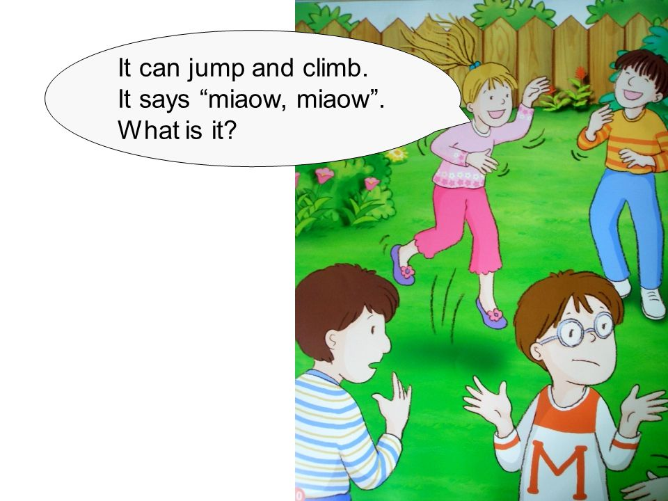 It can jump and climb. It says miaow, miaow . What is it?