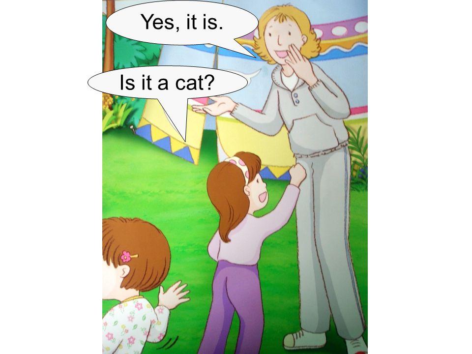 Is it a cat? Yes, it is.